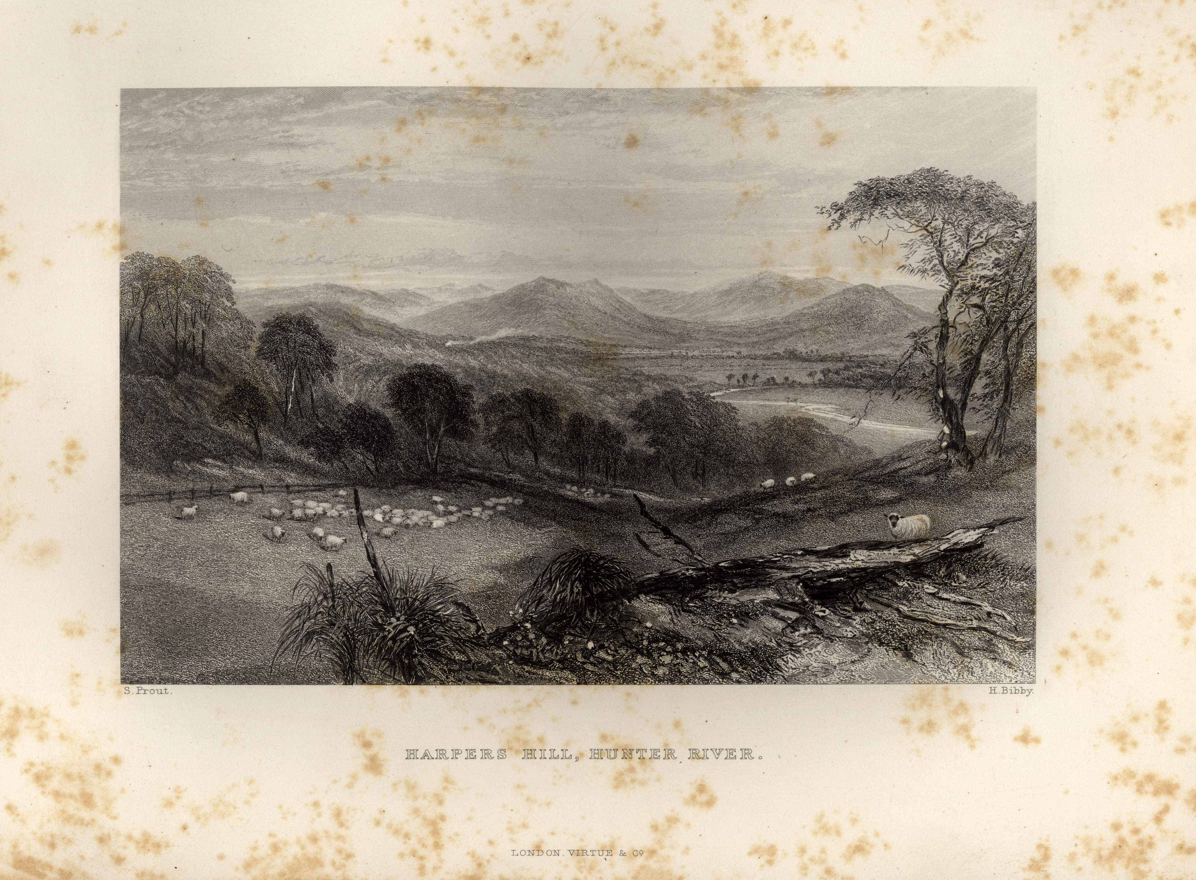 """Plate """"Harpers Hill, Hunter River"""" S Prout H. Bibby facing page 128 from Australia by Edwin Carton Booth, F R. C. I. Illustrated with Drawings by Skinner Prout, N. Chevalier, &c. &c. In Two Volumes Vol. II London Virtue and Company Limited (1873-1876)."""