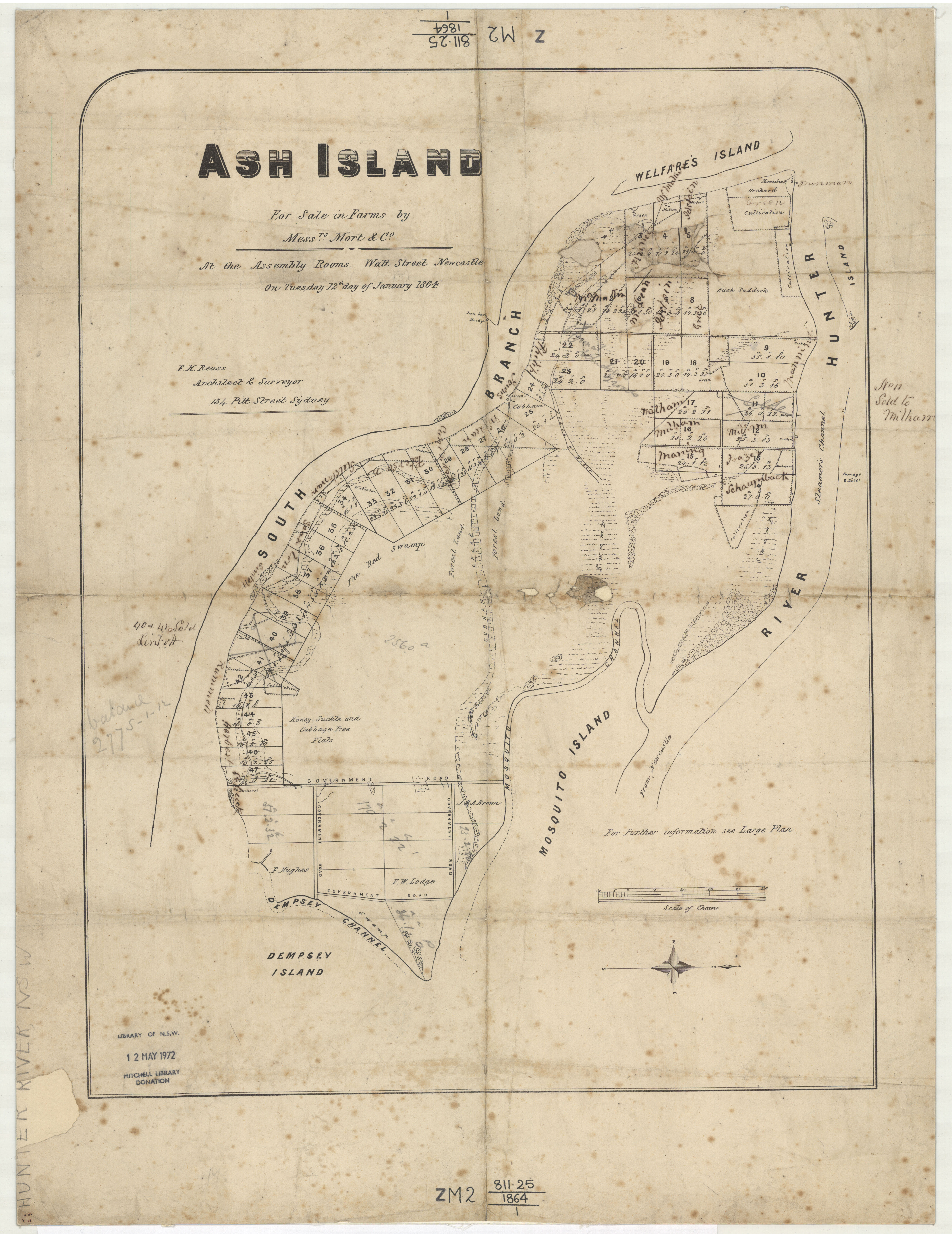 Ash Island 12th January 1864 (Courtesy of State Library of NSW) showing site of Scott's Homestead, orchard and cultivation.