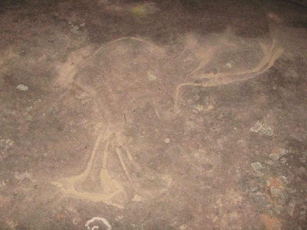 Emu Woman -'Northern Map Site' (or the 'Finchley Engraving Site) Wollombi NSW (Australia)