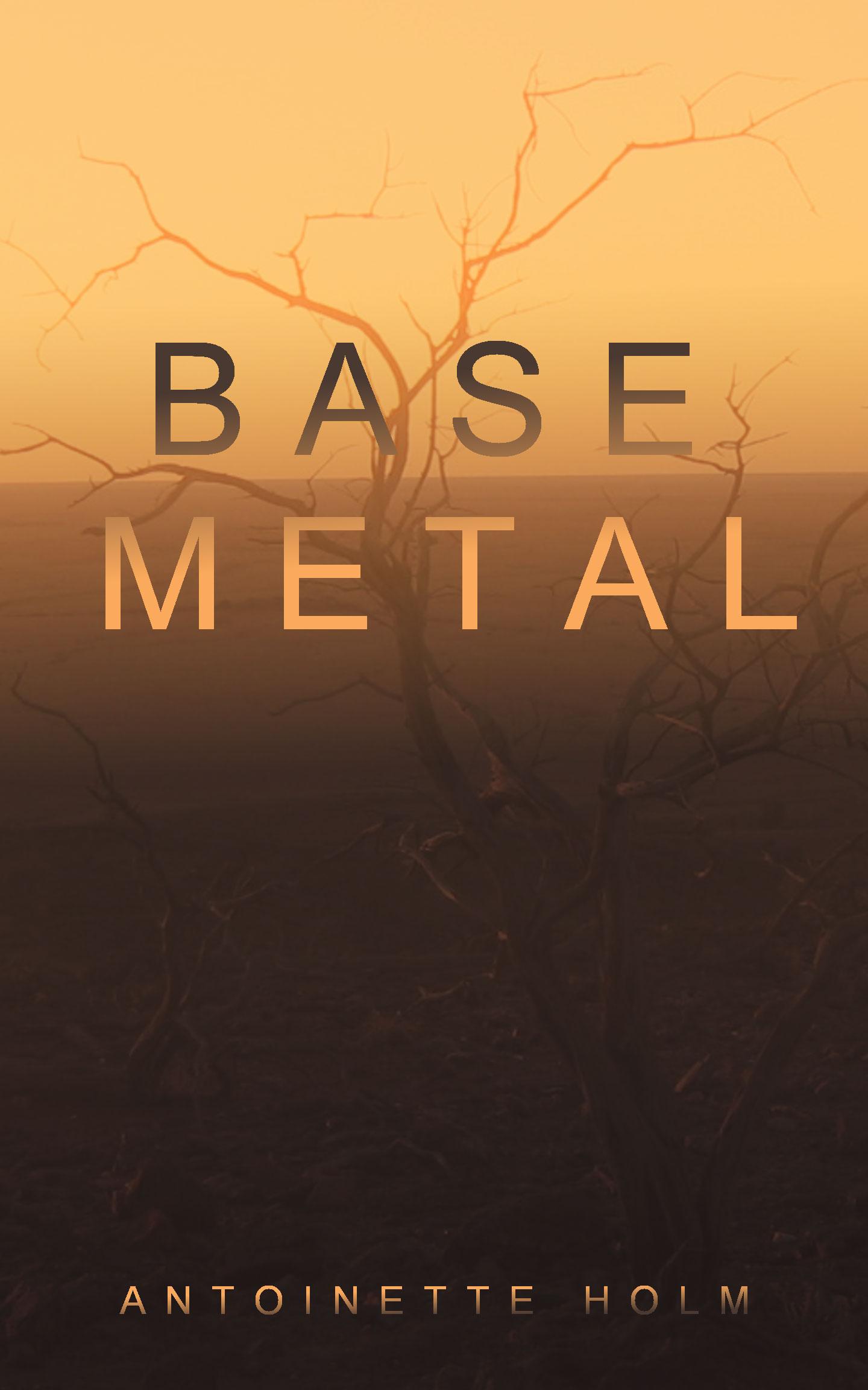 Base Metal by Antoinette Holm