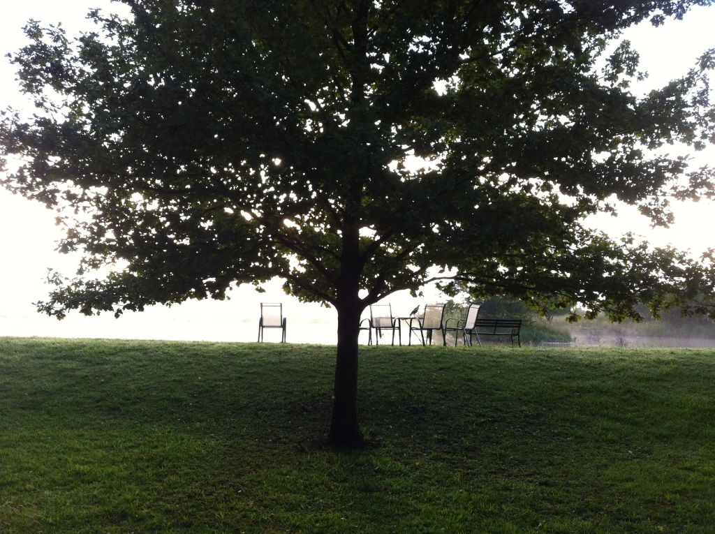 Early morning mist over the dam, chairs with tree in foreground